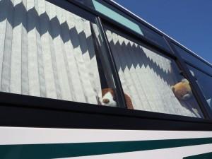 バスに乗ること3時間。